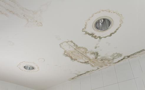 Ceiling Damage East Peoria IL