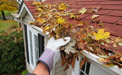 A professional performing Gutter Cleaning Service in Peoria IL